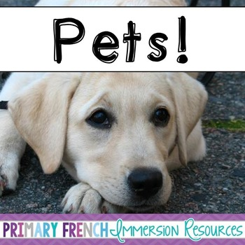 English Pets - Animals - Flashcards, Word wall words, BANG game cards
