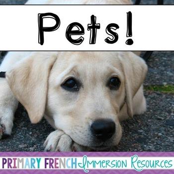 English Pets - Animals - Flashcards, Word wall words, BANG