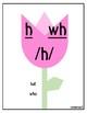 English Phonemes Phonics Posters