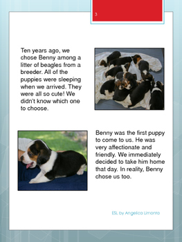 "English Reading Comprehension - ""Benny the Beagle"""