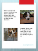 "English Reading Comprehension - ""Benny the Beagle"""