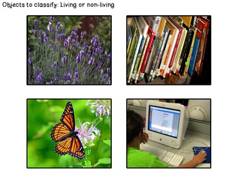 English Unit - Living things and 5 senses