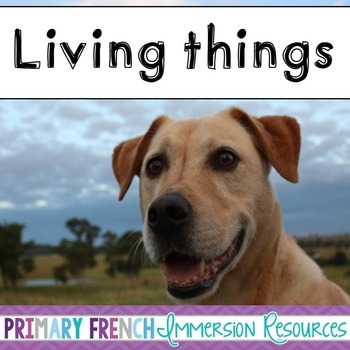 English Unit - Living things and 5 senses