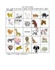 English/ESL Animal Picture Bingo and Hidden Words Puzzle