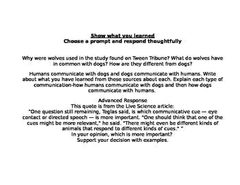 Enrichment Project-Dog Communication