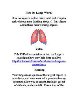 Enrichment Project-How do Lungs Work
