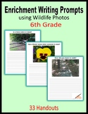 Enrichment Writing Prompts using Wildlife Photos - Extra Credit (6th Grade)