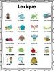 Ensemble d'activités sur les insectes/ French insects acti