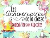 Ensemble pour anniversaires - Tropical cupcakes