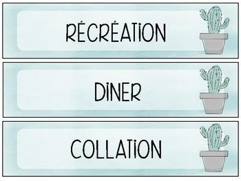 Ensemble pour menu du jour cactus