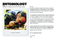 Insects: Entomology Cross-Curricular Learning