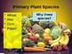 Env. Biology - Lecture 11 - Food