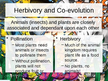 Env. Biology - Lecture 13 - Plant/Animal Associations
