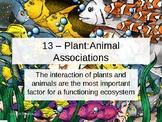 Env. Biology - Lecture 13 - Plant/Animal Associations