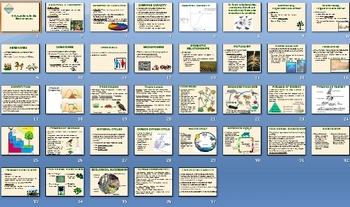 Environment Ecology Smartboard Notebook Presentation Lesson