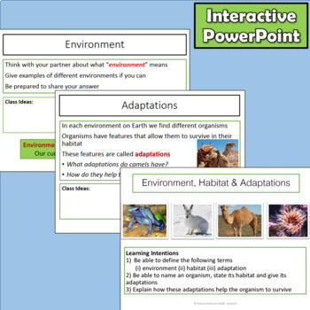 Environment, Habitat and Adaptations 3-LS4-3