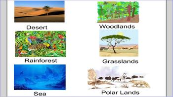 Environment- Habitats and Animals