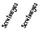 Environment - Scrutineyes (game)