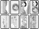 Environment  mini book - taking care of the Earth