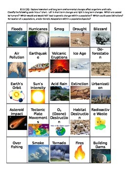 Environmental Changes Cards