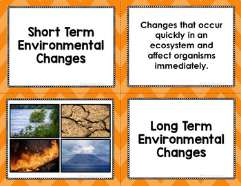 Environmental Changes Vocabulary Sort