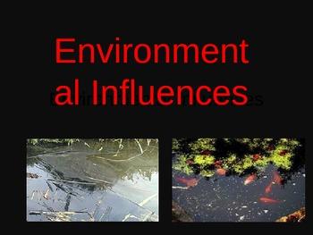 Environmental Influences to genetic mutations