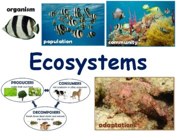 Ecosystems Lesson & Flashcards-task cards, study guide, 2017, 2018 update