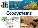 Ecosystems Lesson - classroom unit, study guide 2021-2022