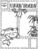 Environmental Science Cane Toads Sketch Notes