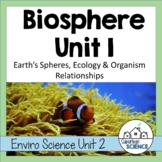 Ecology and Food Webs Lesson: Vocabulary and Activities