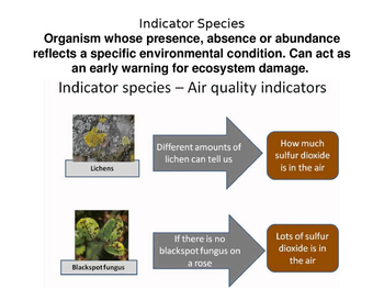 Environmental Science: Species, Interactions, and Population Dynamics