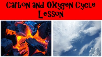 Elemental Cycles:Carbon and Oxygen Cycle Lesson
