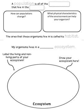 Environments: 4 Page Interactive Science Flip-Book