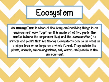 "Environments Freebie {Part of ""Food Chains and Organisms"" Product}"