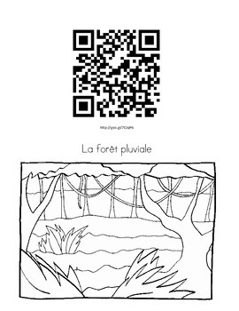 Environnements Naturels Montagne, Rivière, Lac, Forêt, Océan Fiche et codes QR