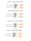 Envision Math, Grade 5, Topic 11-3 Convert Customary Units of Weight