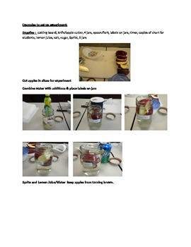 Enzymatic Browning Experiment