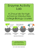 Enzyme Activity Lab