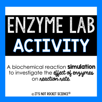 Enzyme Lab Activity