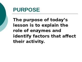 Enzyme Lesson