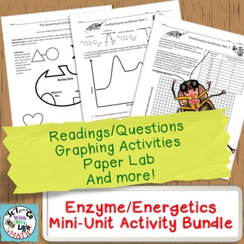 Enzymes Mini-Unit: Worksheets, Graphing Activities, and Paper Substrate Lab