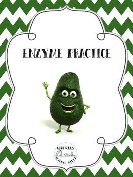 Enzyme Practice Bundle