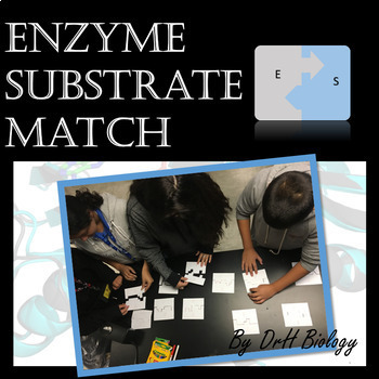 Enzyme Substrate Match Activity