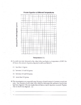 Enzyme & Temperature Activity Worksheet