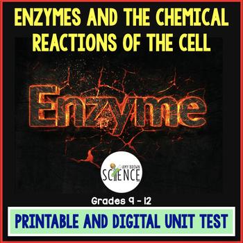 Enzymes Unit Test