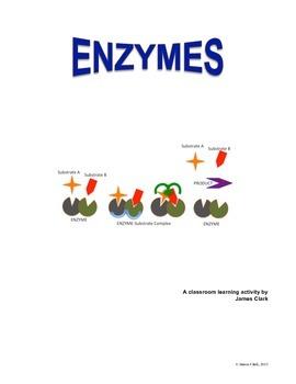 Enzymes: Classroom demonstartion activities