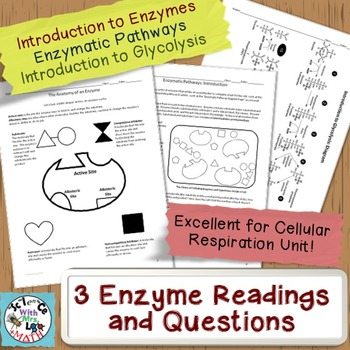 Enzymes, Enzymatic Pathways, and Glycolysis Tutorial and Worksheets