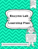 Enzymes Lab Learning Plan