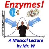 Enzymes (Mr. W's Enzyme Music Video)