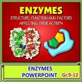 Enzymes PowerPoint {Editable}